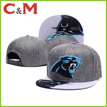 Panthers Football Fan Embroidered Flat Brim Caps and Hats