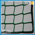 elastic Fine Mesh cargo netting with good quality hooks pp cargo netting