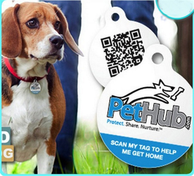 custom printed QR code and URL encoded epoxy nfc pet ID collar tag for dog / cat tracking