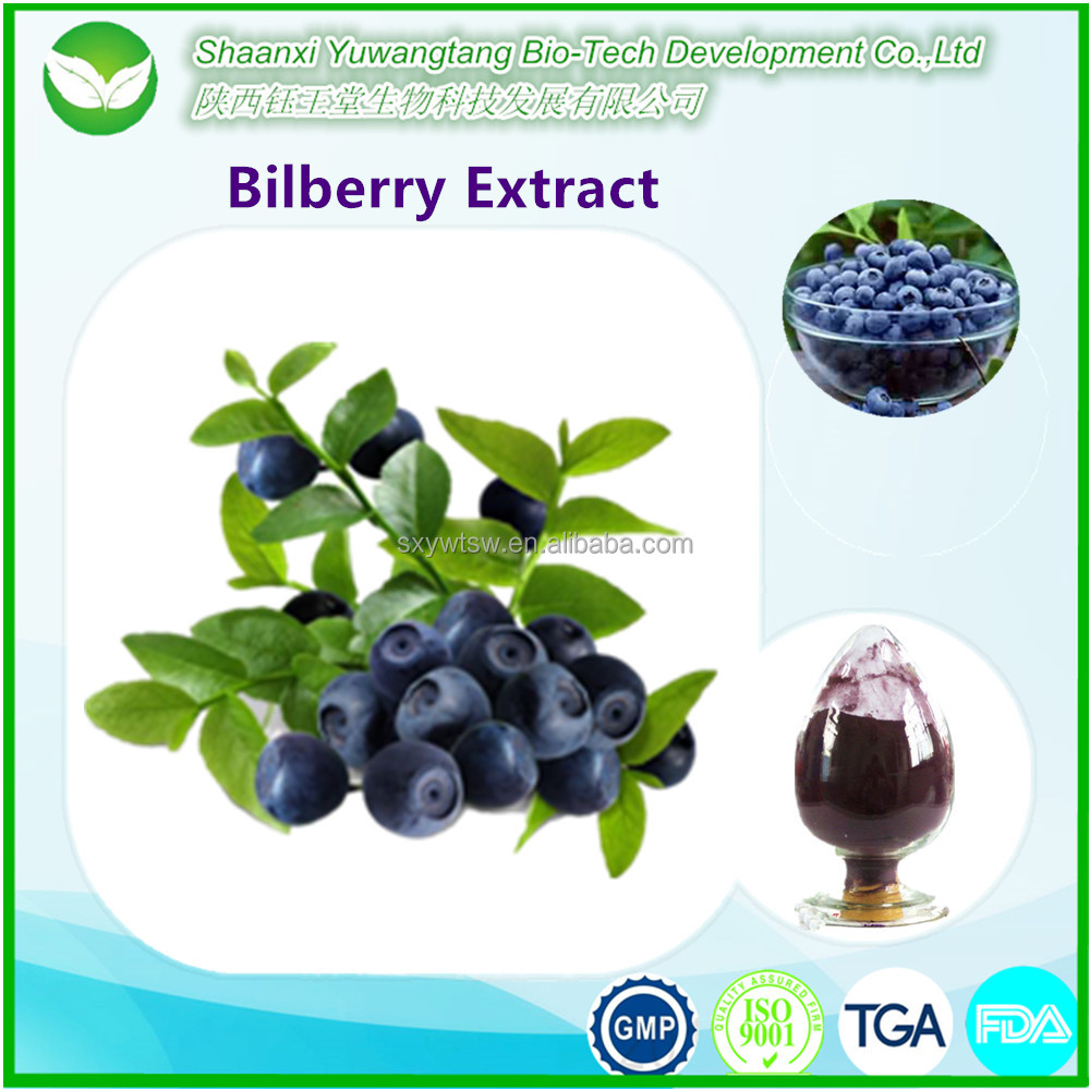 Free samples for dried blueberry powder,blueberry extract powder