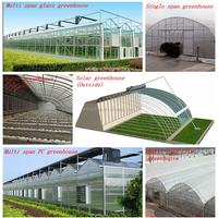 Tunnel Greenhouse PC Sheet Greenhouse Glass