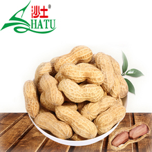 Factory supply good price raw benefits groundnut peanuts in shell