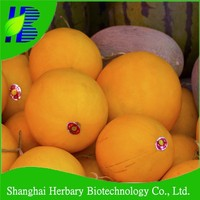 2015 Latest melon seed golden melon seeds for planting
