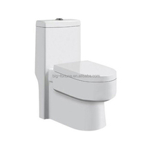 Chinese Porcelain Superior Quality European Dual Flush Toilet one Piece