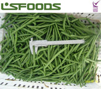China Wholesale Cut FROZEN GREEN BEANS IQF GREEN BEANS