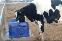 freeze proof plastic drinkering water trough cattle water trough for dairy and cattle farms