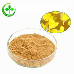 Best price of dried ginkgo biloba leaf/leaves extract powder 24:1