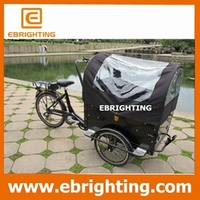 strong frame 250w cargo 3 wheel motorized bike for wholesales