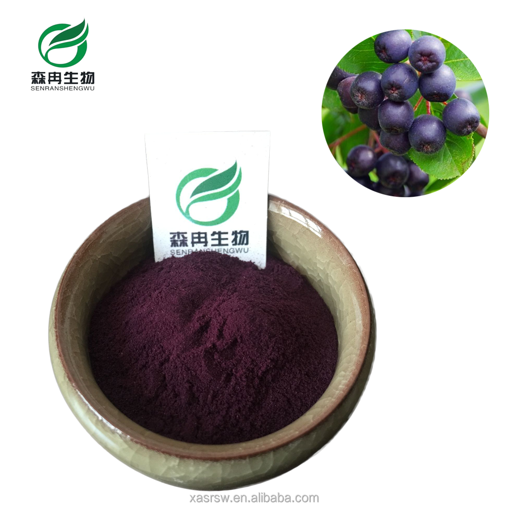 SR Factory Supply Acai Berry Powder Fruit Juice Powder For Health Food & Beverage
