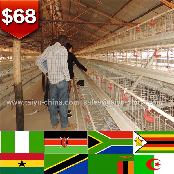 Design 20000 birds automatic chicken farm equipment chick cage with full parts