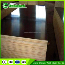 pine/birch film faced plywood with best price and good quality in linqing city