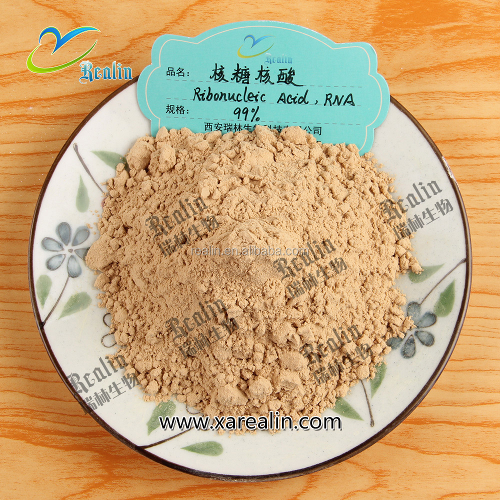RNA Powder from Brewer Yeast, Ribonucleic Acid Powder