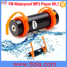 Cheap 8GB Swimming Diving Water Waterproof MP3 FM Black