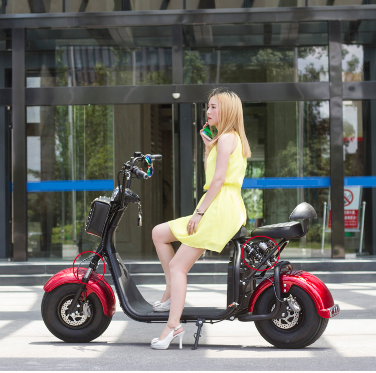 citycoco scooter with removable battery 40km/<strong>h</strong> 55km