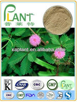 High Quality mimosa hostilis root bark powder