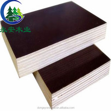 Poplar plywood formwork type used construction material