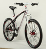 alloy frame and fork mountain bike/mountain bicycle/mtb(mtb-980)