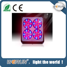 180W High Quality Apollo 4 LED Grow Light for Indoor Plants