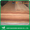 burma timber 1300x2500x0.30-0.50mm rotary cut natural wood face veneer gurjan veneer/ keruing veneer with competitive price