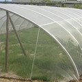 white color anti insect net for greenhouse