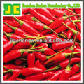 Supply 100% natural Pepper Extract 95% HPLC Capsaicine
