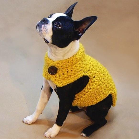 Fashion Design Button Neck Hand Crochet Dog Clothes Factory