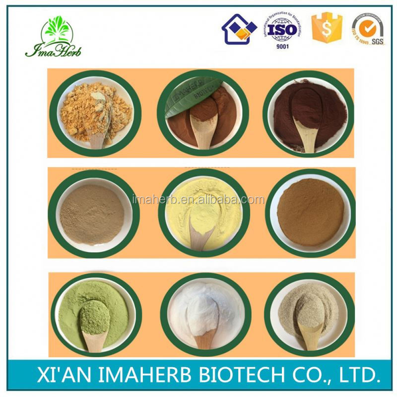 Best Sell ISO Certified water soluble oleuropein best price