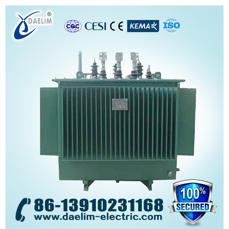 10kv 1250kva Amorphous Core Full-sealed Distribution Transformer