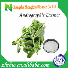 Herbal Food Supplement Andrographis Paniculata Extract
