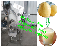 double screw juice extracting machine/pear juice extractor machine/lime juice squeezer machine