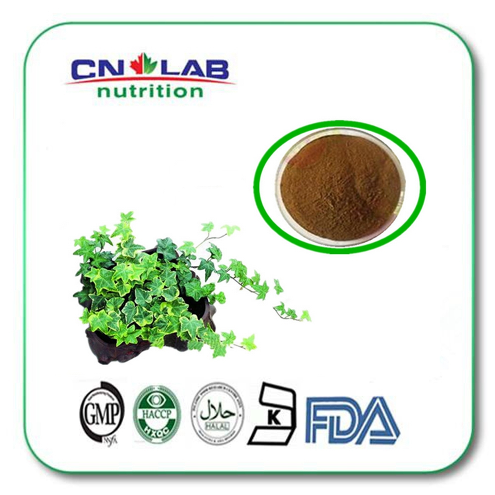 Natural Plant Ivy Leaf Extract 10:1/20:1 /ivy leaf extract powder