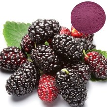 Sang Shen natural cosmetic ingredient anthocyanidins mulberry fruit extract