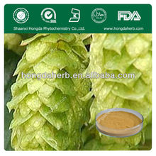Supply Organic Hops Flower Extract