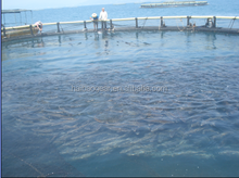 Aquaculture equipment breeding fishing sea net cage