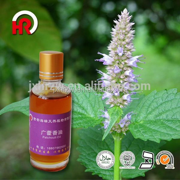 Competive price patchouli essential oil