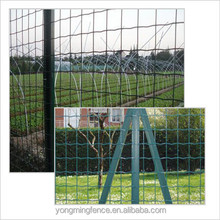 Welded wire mesh rolls safety Euro fence made in China