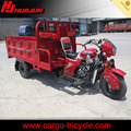 moto with 3 wheel/chinese tricycle/motorized petrol gas