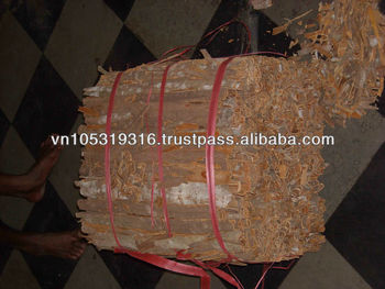 WHOLE PRESSED CASSIA ( skype: export.japonica)