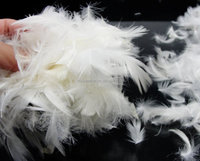 high quality washed white goose feather on a good market from China