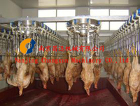 poultry equipment for chicken, duck, geese and turkey