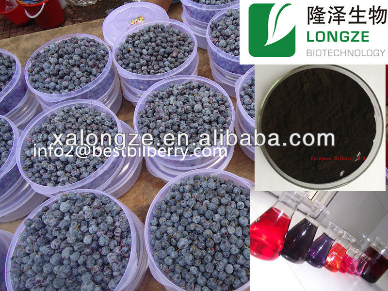 bilberry p.e powder natural bilberry powder dried bilberry