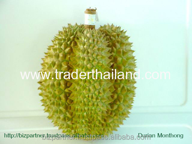 Wholesale quality GAP fresh Monthong Durian from Thailand