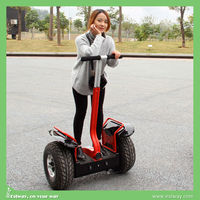 Wholesale 2 wheel self balancing electric scooter fekon motorcycle
