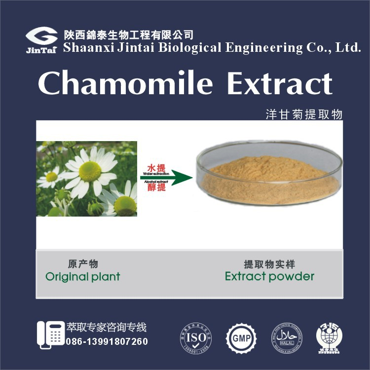 high quality natural chamomile P.E