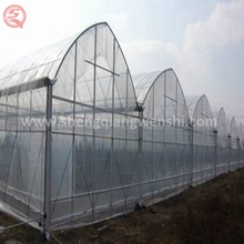 China supplier low cost tunnel clear plastic agricultural greenhouse equipment