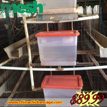 Alibaba China Chicken products chicken egg poultry farm for poultry equipment for small farm