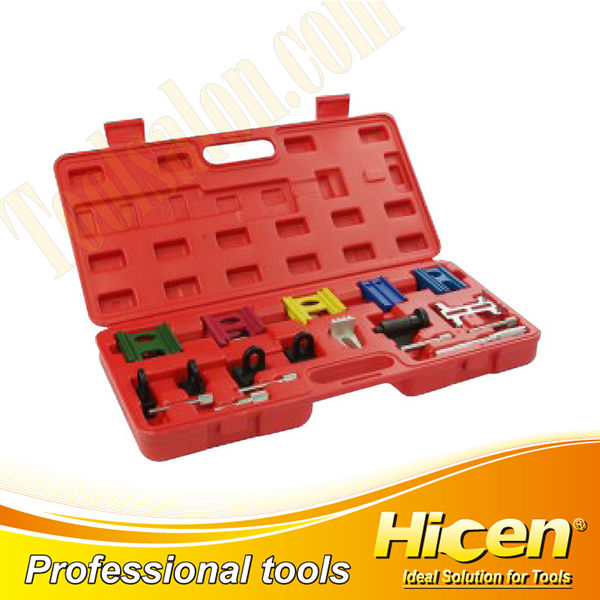 19pcs Engine Timing Locking Tool