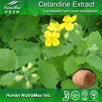 Hot sale Plant extract Toddaline/Chelidonine alkaloids/Celandine extract