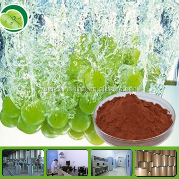 High Quality 100% Black Grape Seed Extract