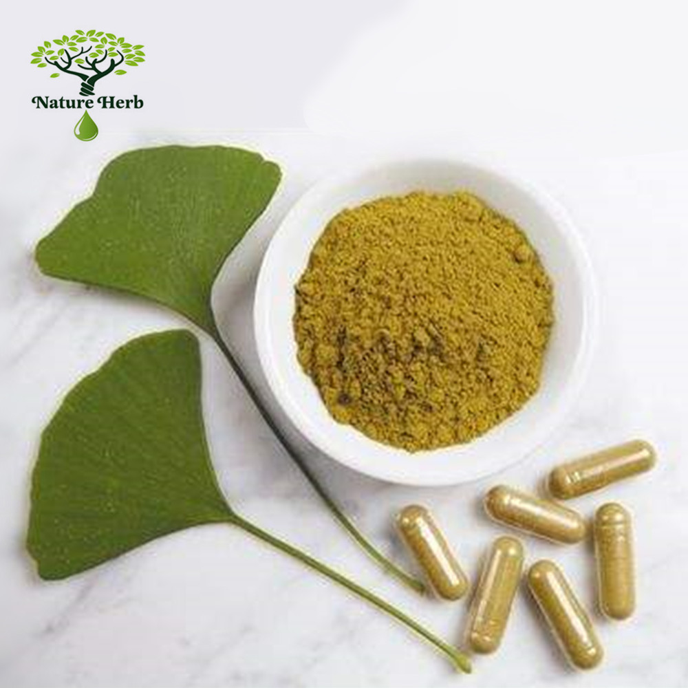 Supplier Provide Best Quality Water Soluble Ginkgo Biloba Extract/Ginkgo Terpene Lactones